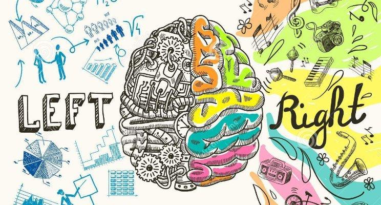 Хранителен режим и мозъчна дейност, каква е връзката?